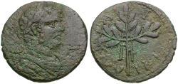 Ancient Coins - Caracalla (AD 198-217). Caria. Alabanda Æ25 / Laurel Branch