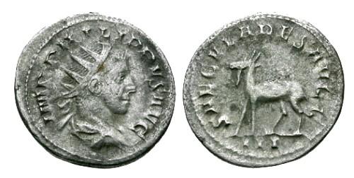 Ancient Coins - aVF/aVF Philip II AR Antoninianus / Goat