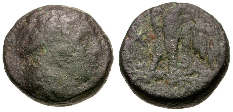 Ancient Coins - Ptolemaic Kings of Egypt. Ptolemy I Soter Æ Dichalkon