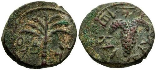 Ancient Coins - EF/EF Bar Kochba Revolt AE20 / Palm Tree and Grapes