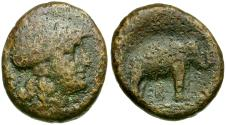 Ancient Coins - Seleukid Kings of Syria. Seleukos I Nikator Æ19 / Elephant