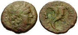 Ancient Coins - gF+/gF+ Bruttium Vibo Valentia (Hipponion) Æ Semis / Cornucopia