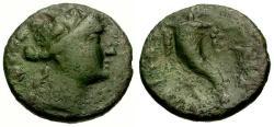 Ancient Coins - gF+/gF+ Lucania Paestum Æ Triens / Dionysus and Cornucopia