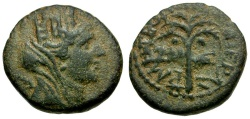 Ancient Coins - Phoenicia. Tyre. Civic Issue Æ15 / Palm Tree