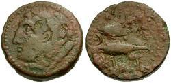 Ancient Coins - Spain. Gades Æ26 / Tunny Fish