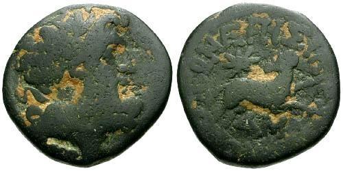 Ancient Coins - gF/gF Seleucis and Pieria Antioch AE20 / Star of Bethlehem