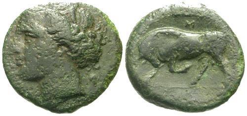 Ancient Coins - VF/VF Sicily Syracuse Time of Hieron II AE19 / Bull
