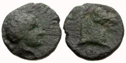 Ancient Coins - Spain. Cartagonova Æ 1/4 Calco / Scipio Africanus?
