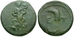 Ancient Coins - Pisidia. Etenna Æ16 / Woman with Snake