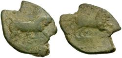 Ancient Coins - Apulia. Arpi Æ26 / Bull & Horse
