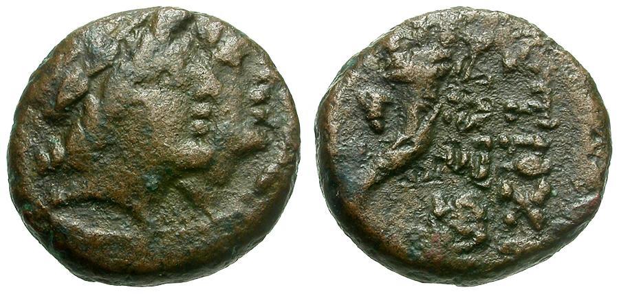 Ancient Coins - Phoenicia.  Akko-Ptolemais Æ11 / Dioscuri