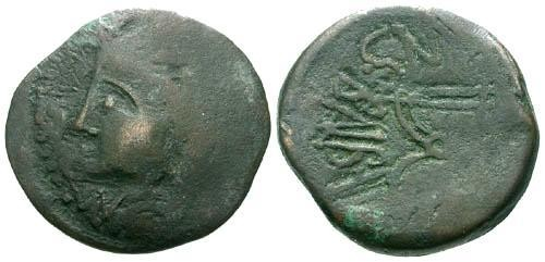 Ancient Coins - F/F Islands off Sicily Melita AE21 / Curule Chair / William C Boyd collection