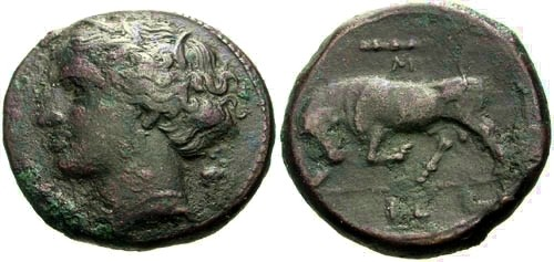 Ancient Coins - VF/VF Sicily Syracuse Time of Hieron II AE20 / Persephone and Bull