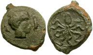 Ancient Coins - Sicily. Syracuse. Second Democracy Æ Tetras / Cuttlefish