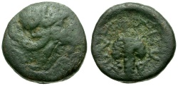 Ancient Coins - Lokris.  Lokri Opuntii Æ13 / Athena and Grapes