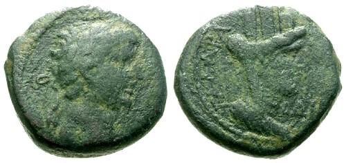 Ancient Coins - gF/gF Titus Decapolis Gadara AE16 / Tyche