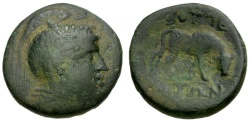 Ancient Coins - Macedon. Bottiaea. Under Roman Rule. Time of Aemilius Paullus. Gaius Publilius as Quaestor Æ22 / Bull