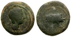 Ancient Coins - Spain.  Castulo Æ Quadrans / Boar