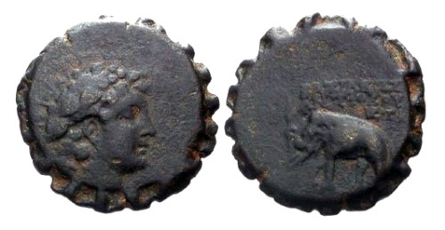 Ancient Coins - gF/gF Antiochus VI Serrate AE21 / Elephant