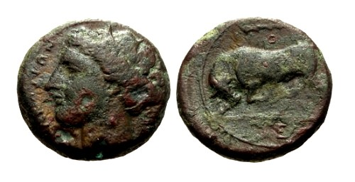 Ancient Coins - VF/VF Sicily Syracuse Hieron II AE19 / Persephone and Bull