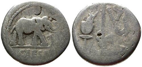 Ancient Coins - F+/F+ Julius Caesar Denarius / Elephant