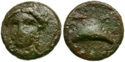 Ancient Coins - Aeolis. Grynion Æ11 / Apollo and Mussel Shell