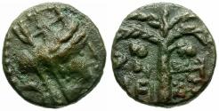 Ancient Coins - Phoenicia. Tyre. Pseudo-autonomous Æ15 / Palm Tree
