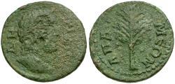 Ancient Coins - Phrygia. Apameia. Pseudo-Autonomous Issue Æ24 / Tree