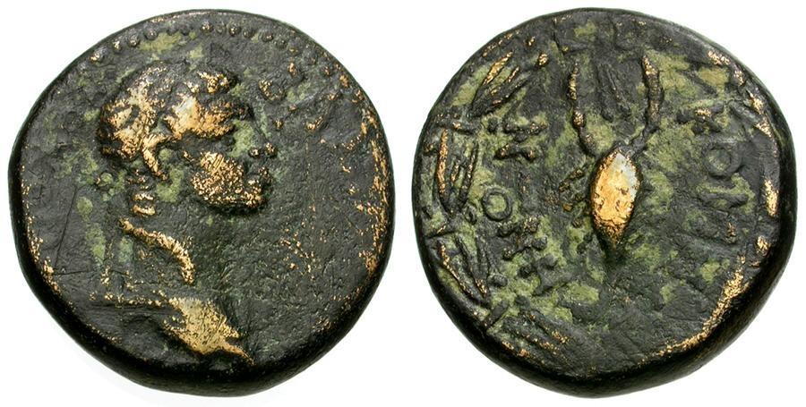 Ancient Coins - Kingdom of Commagene. Samosata. Iotape. Wife of Antiochos IV Æ25 / Scorpion