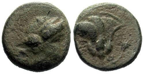 Ancient Coins - gF/gF Caria Rhodos AE 11 / Rose