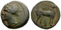 Zeugitania. Carthage Æ16 / Tanit / Horse and Palm tree