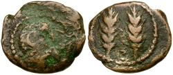 Ancient Coins - North Africa. Mauretania. Zilis Æ17 / Two Grain Ears