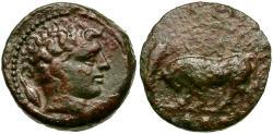 Ancient Coins - Sicily. Gela Æ heavy Trias / Bull
