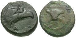 Ancient Coins - Sicily. Akragas Æ Onkia