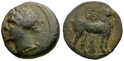 Ancient Coins - Zeugitania. Carthage Æ16 / Tanit / Horse and Palm tree