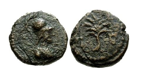 Ancient Coins - aVF/aVF Domitian AE Quadrans / Minerva and Olive Branch