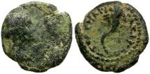 Ancient Coins - Ptolemaic Kings of Egypt. Arsinoe III Philopator. Wife of Ptolemy IV Æ11 / Cornucopia