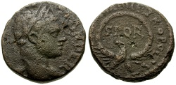 Ancient Coins - Severus Alexander.  Samaria.  Caesarea Maritima Æ20 / Wreath and Eagle
