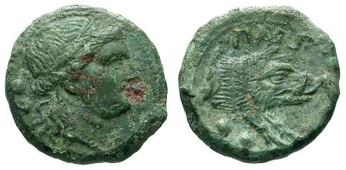 Ancient Coins - VF/VF Poseidonia Paestum AE Quadrans / Demeter / Boar