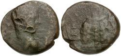 Ancient Coins - Elagabalus. Judaea. Samaria. Neapolis Æ22