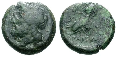 Ancient Coins - gF/F Lucania Paestum AE19 / Poseidon / Eros on dolphin