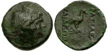 Kings of Skythia. Charaspes Æ24 / Eagle