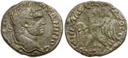 Ancient Coins - Caracalla. Ake Ptolemais. Phoenicia BI Tetradrachm / Caps of the Dioscuri