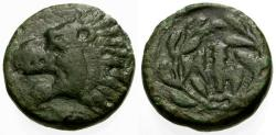 Ancient Coins - aVF/aVF Thessaly, Herakleia Trachinia ÆDichalkon / Lion / Club and Dolphin in Wreath