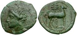 Ancient Coins - Zeugitania. Carthage Æ18 / Horse and Palm tree