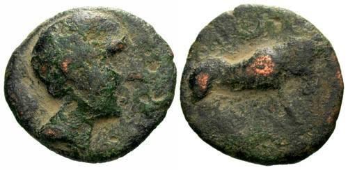 Ancient Coins - aVF/aF Celtic Iberian AE18 / Bull