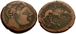 Ancient Coins - Celtic Iberia, Ilerda Æ22 / Wolf