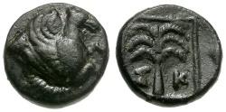 Ancient Coins - Troas. Skepsis Æ10 / Palm Tree