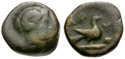 Ancient Coins - Macedon. Aphytis Æ11 / Zeus Ammon / Eagle