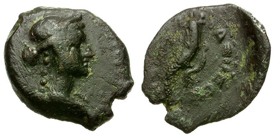Ancient Coins - Ptolemaic Kings of Egypt. Ptolemy VIII Euergetes Æ Chalkous / Arsinoe III